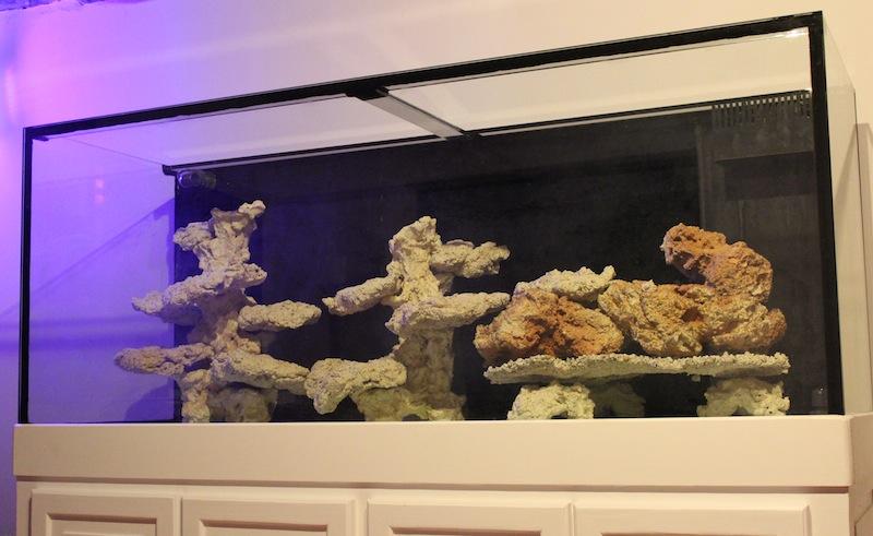 aquarium avec aquaroche