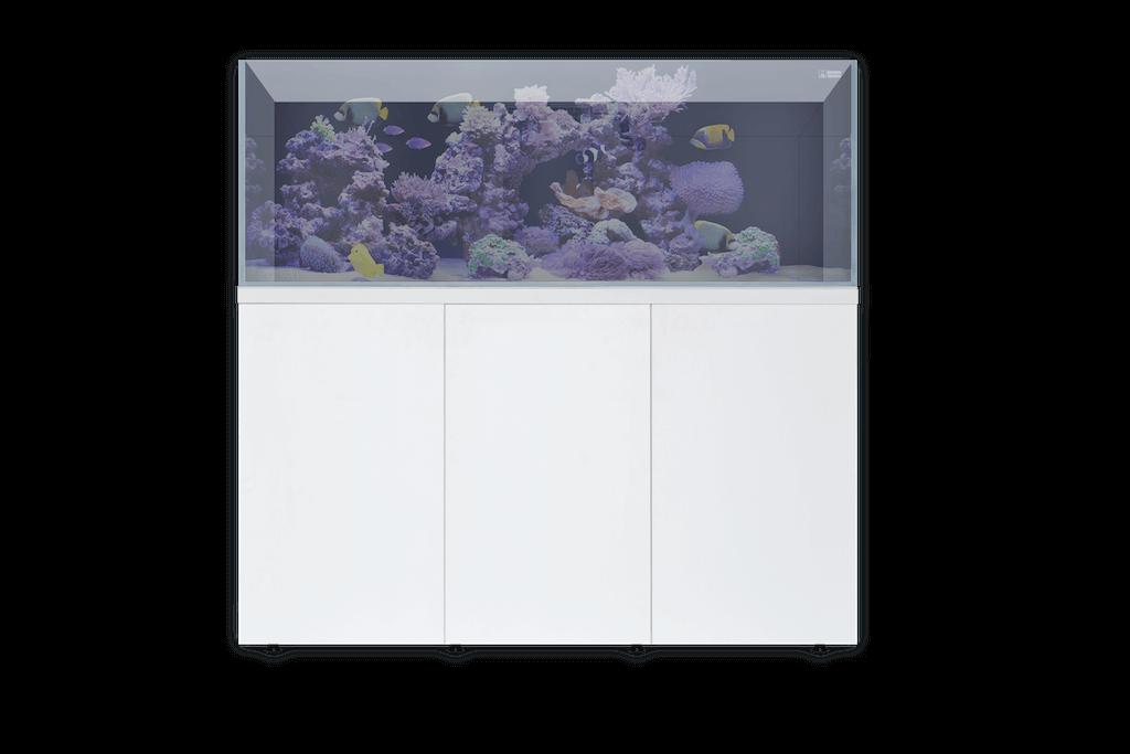 L'aquarium 720 qui est le plus grand de la gamme.