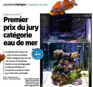 recifal news site de news sur le petit monde de l 39 aquariophilie marine dite r cifal. Black Bedroom Furniture Sets. Home Design Ideas