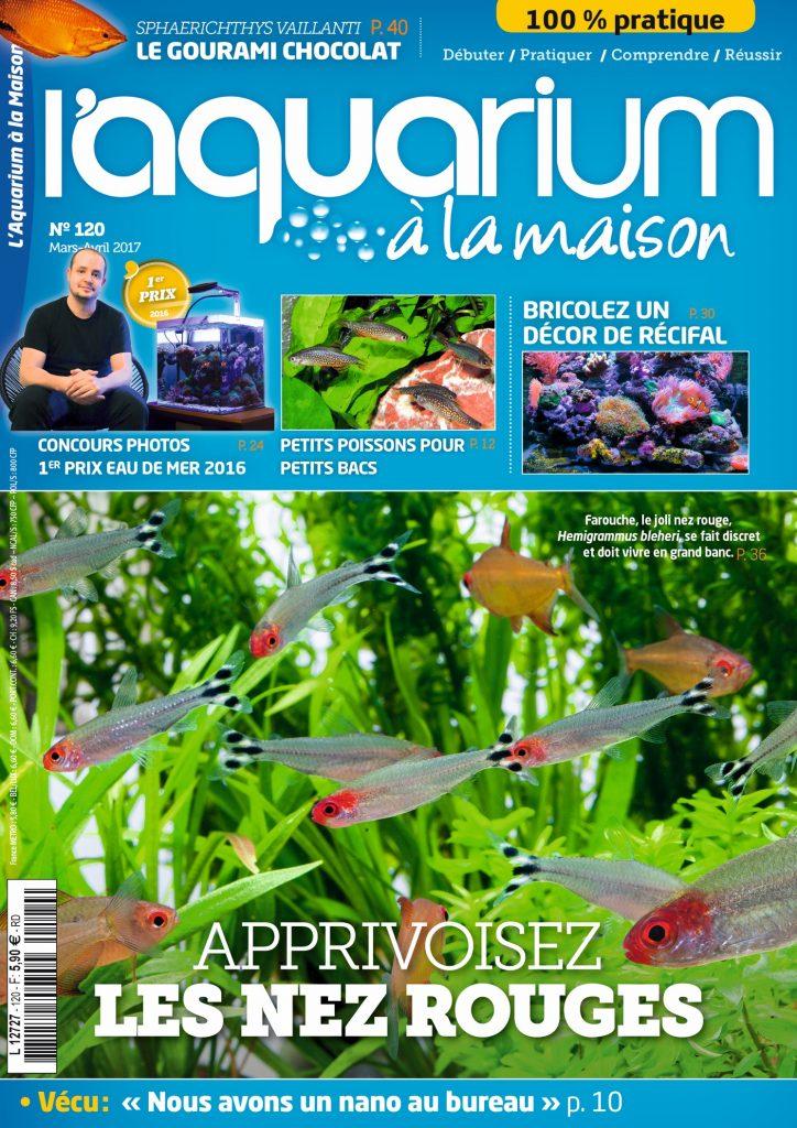 L Aquarium A La Maison N 120 Mars Avril 2017 Recifal News