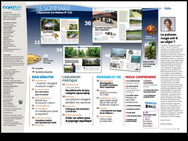 Aquarium la maison num ro 122 juillet ao t 2017 for Aquarium a la maison pdf