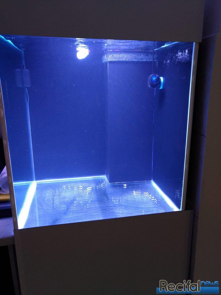 aquarium rempli