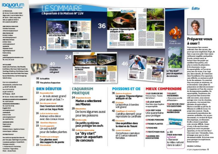 Aquarium la maison 124 sommaire r cifal news for Aquarium a la maison pdf
