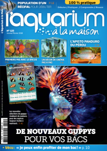 Aquarium à la maison couverture