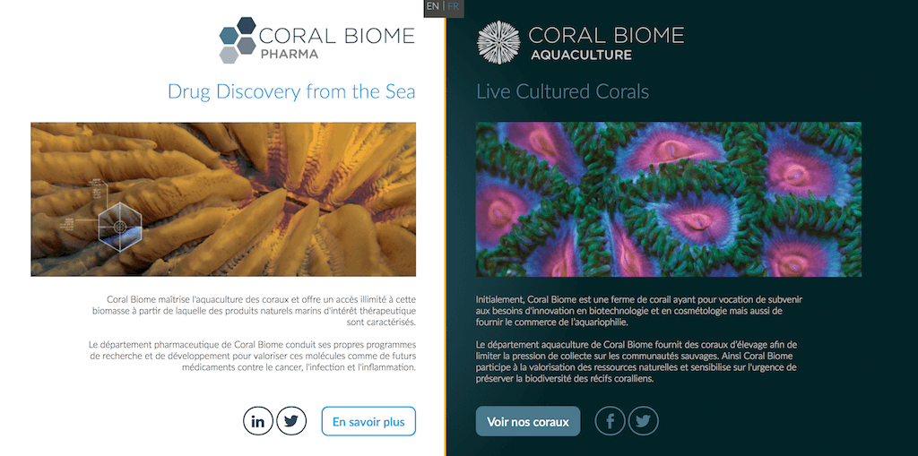 coral-biome-img01.png