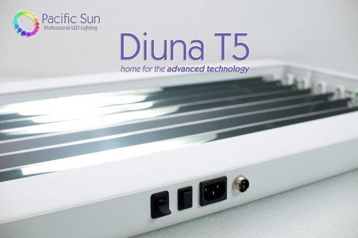 Diuna_3.jpg