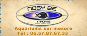 nosybe.png