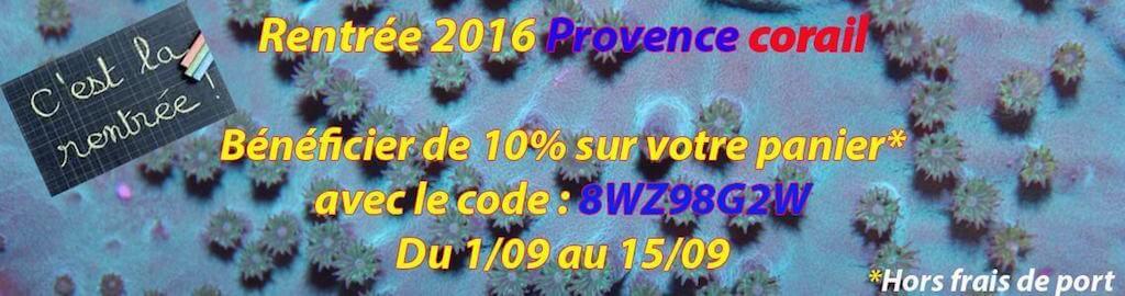 provence-corail-img01.jpg