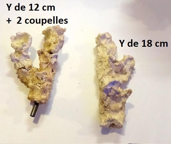 DSC01119-2.jpg
